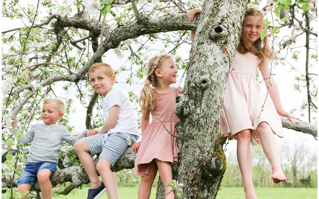 NEW HAMPSHIRE FAMILY PHOTOGRAPHER | LACASSE COUSINS IN THE APPLE BLOSSOMS